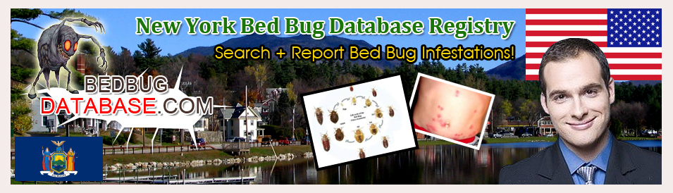 Bed-bug-database-registry-for-New-York