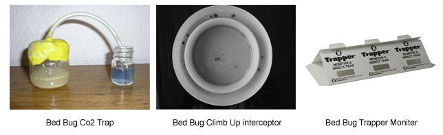 Bed Bug Detecting Product