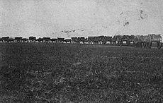 A line of wooden carts with wagon wheels pulled by oxen move down a path through a prairie